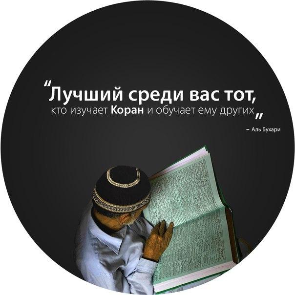 http://cs408718.vk.me/v408718151/39ad/fh-Yb6FO94o.jpg