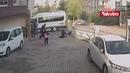 كلاب ضالة تهاجم طفلة ووالدتها في قرشهير ال 15