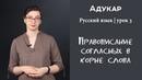 Правописание согласных в корне слова Русский язык