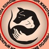 Помощь бездомным животным г. Вятские Поляны