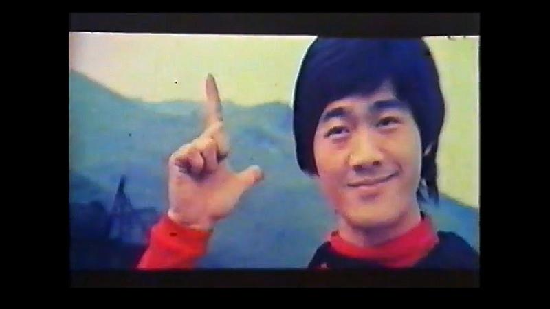Bruce Lee Contra los Halcones Negros