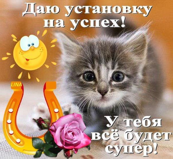 http://cs319816.vk.me/v319816834/413a/exnM4Xi372o.jpg