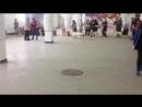 24.02.2018! ГОР в ринге Выставка собак всех пород ранга САС КЧФ Судья Пирогова И.Е. Хендлер: Левченко Кристина.
