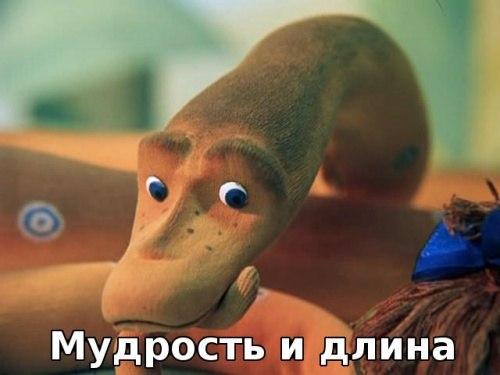 http://cs317221.userapi.com/v317221634/2bfb/EIlLm665mpg.jpg