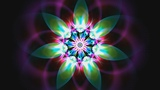 4K New Age Colorful Fractal Flower 2160p