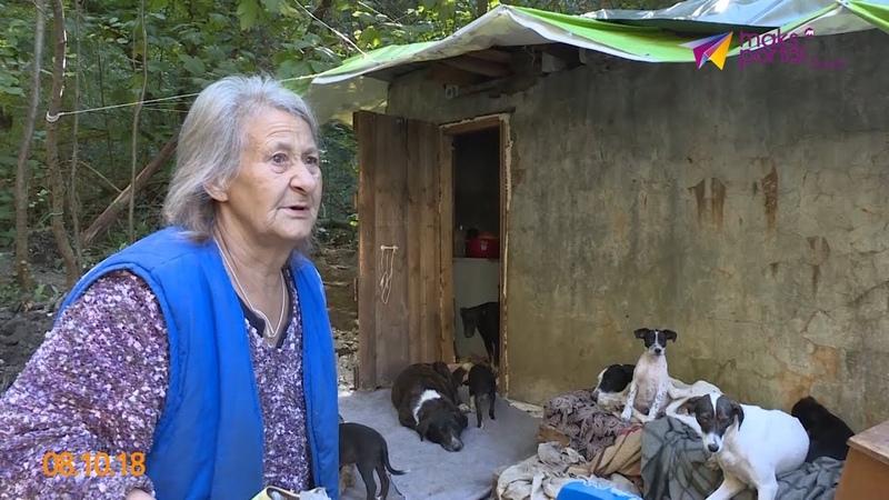 В Сочи пожилая женщина вынуждена жить в лесу