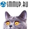 SMMup.ru - инструменты анализа сообществ в ВК