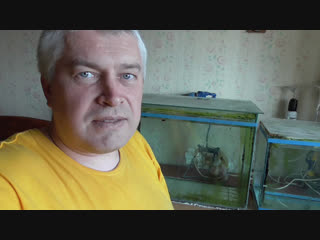 Сегодня сменил воду в аквариуме, новая вода в аквариуме