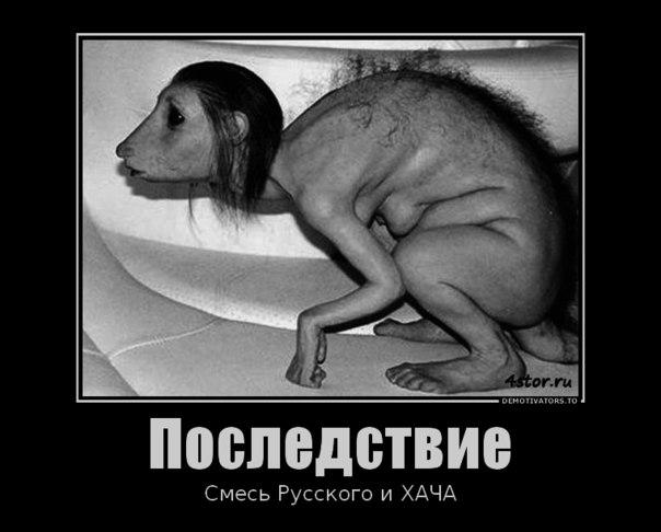 """В Кремле узрели """"первый признак понимания"""" с США - Цензор.НЕТ 6886"""