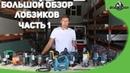 KhimkiQuiz 01.02.19 Вопрос№77 Друг Вити Малеева Костя Шишкин не знал, что ЭТИМ словом называют инструмент, и назвал так свою собаку. Скорее всего - за низкопосаженные на морде глаза.