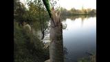 Осень, ловля щуки на воблеры! Тульская область... ZipBaits Orbit 110 sp