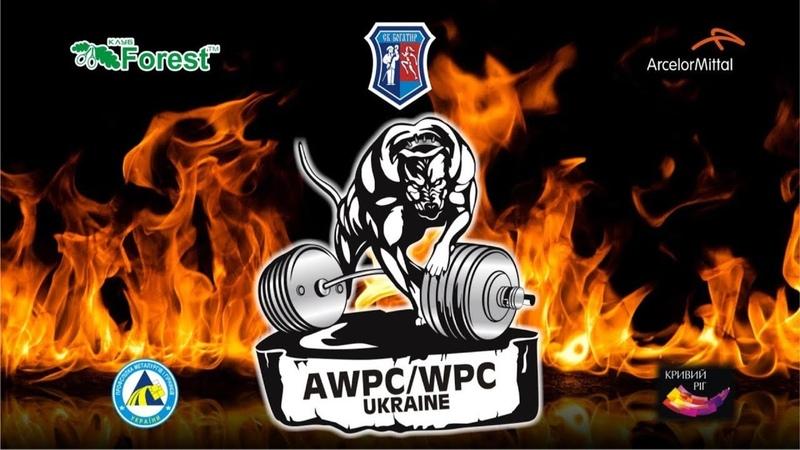 Руслан Фурсов ⚡ Жим 382 кг ⚡ Кубок Украины WPC/AWPC