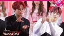 2018MAMA x M2 워너원Wanna One Reaction to 아이즈원IZONEs Performance in KOREA