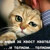 Устина Успенская, 13 августа 1985, Уфа, id213365093