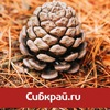 Sibkray.ru - новости Новосибирска, Сибири.