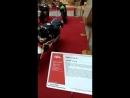 выставка в ТРЦ Мегаполис часть 1