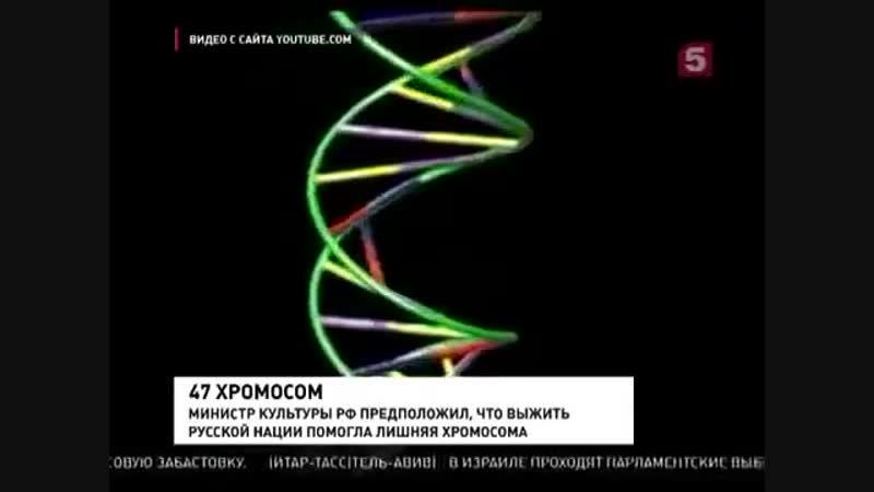 Запад загнивает без лишней хромосомы, а Россия процветает!