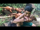 Amazing primitive technology ! Cooking 5 Baby Chicken in forest - Eating delicious Best