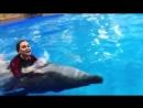 Отдых в Dolphin Planet