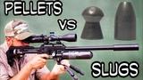 Pellets vs Slugs in Heavy Wind - Airgun Pest Control