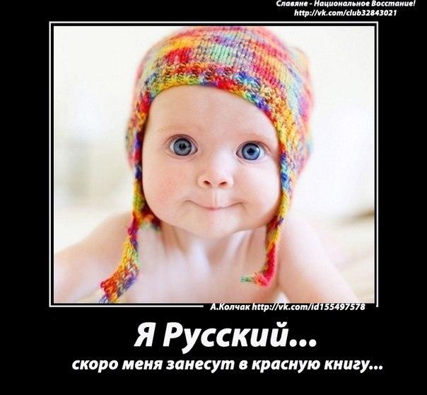 282-ая для тамбовчанина за «унизительные и негативные» видеоролики ВКонтакте