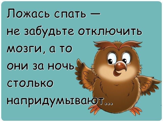 https://cs7051.userapi.com/c543100/v543100567/310ef/UkwiqypBjV0.jpg