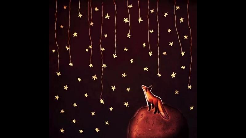 Лисёнок и звезды