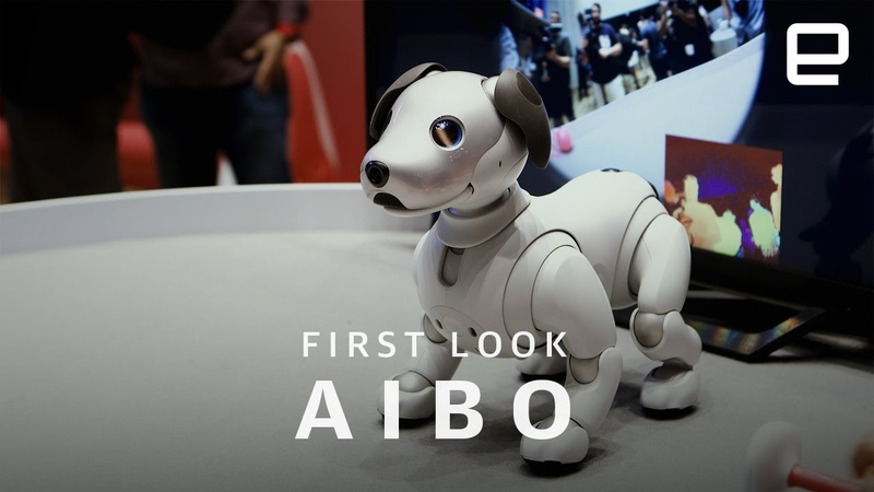 Sony Aibo First Look Impossibly Cute Robot Dog