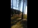 Каменск Шахтинский ПЕЙНТБ Live