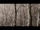 Мастер Муси (второй сезон) 10 серия / Мастер Муши [ТВ-2] / Mushishi Zoku Shou (Русская озвучка)