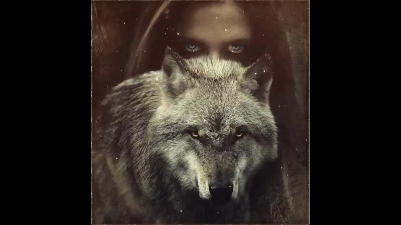 Влюблeнный вoлк уже не хищник. Влюблeнный волк тeперь зaщитник.