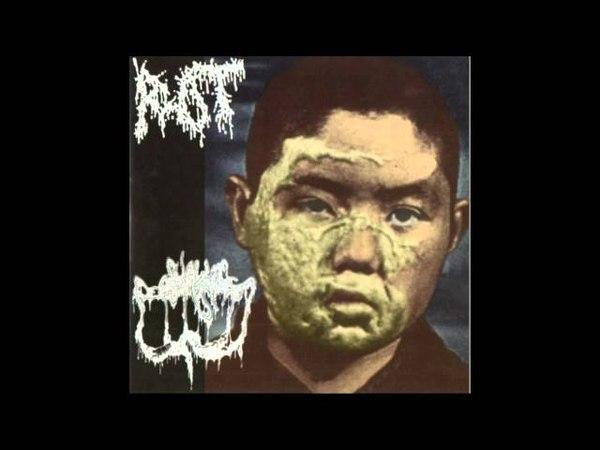 Rot . sublime cadaveric decomposition - split