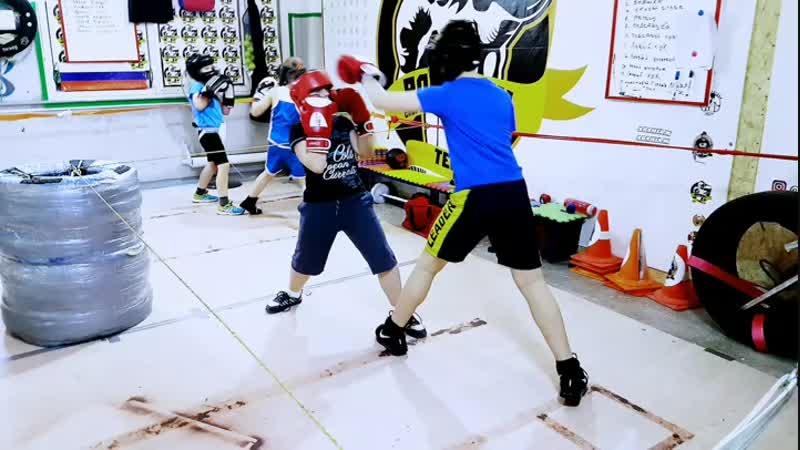 Romanov Team Boxing Cub
