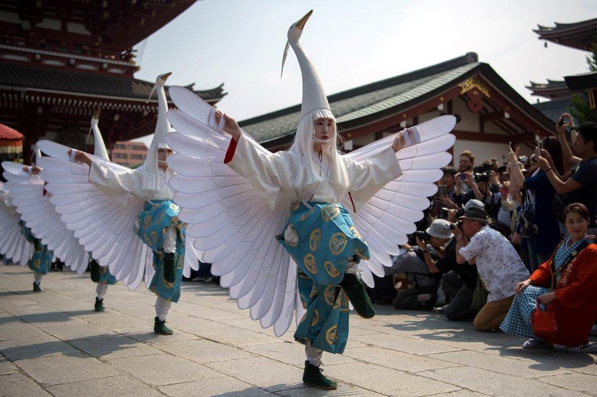 Танец белых журавлей: Лебединое озеро на японский манер
