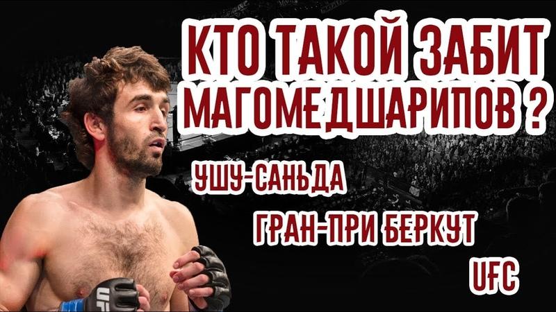 Кто такой Забит Магомедшарипов Ушу-саньда, Гран-при ACB и UFC