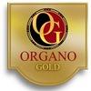 Organo GOLD - Кофейный бизнес в Украине Харьков
