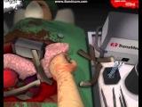 Симулятор доктора(Surgeon Simulator 2013)
