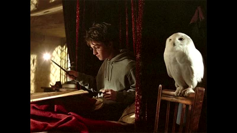 Harry Potter_ Lernen Deutsch mit Filmen