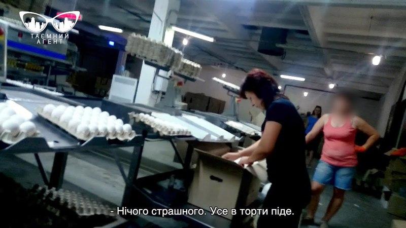 Часть 3 Трудный путь яйца и свежая тухлятина Тайный агент 2 сезон Курица