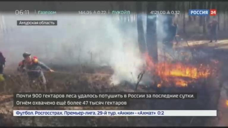 Новости на Россия 24 • Почти 900 гектаров леса удалось потушить в России за последние сутки