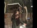 Страусиха Фрося любит Шапки. Аренда страуса 8-926-345-88-66