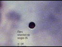 Merv Cell