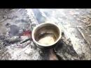 Дождливый поход по болотам-boloto--jabota--scscscrp