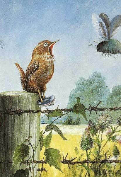 Забавные иллюстрации художника Rudi Hurzlmeier. Этот замечательный автор еще и добрый детский сказочник, опубликовавший более 39