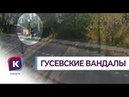 Полиция Гусева ищет вандалов