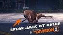 БРЕЙК-ДАНС от оленя в Division 2, ленивая лошадь в RDR2 и другие баги и приколы из игр недели - 49 VGTimes