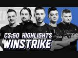 Обновлённый состав Winstrike по CS:GO: Хайлайты