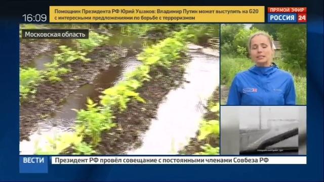 Новости на Россия 24 • Рекордный ливень оставил дачников без урожая