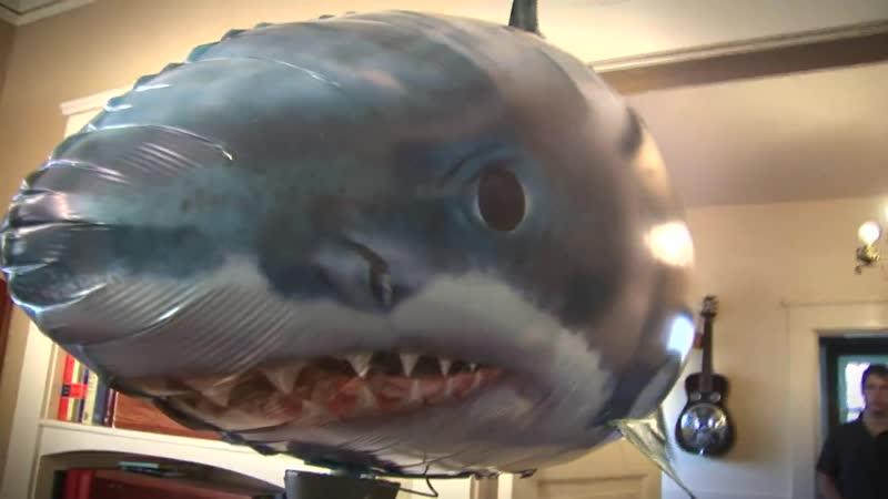 летающие рыбы и акулы радиоуправление