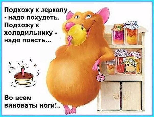 https://pp.userapi.com/c543100/v543100567/30b71/6QvXktCZg-c.jpg